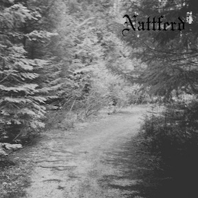 Nattferd - Journey Through a Path in the Woods