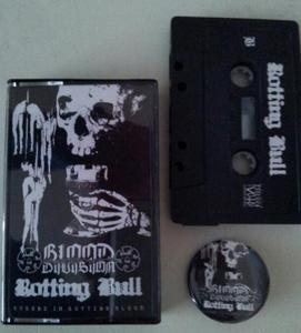 Blood Division / Rotting Bull - Cursed in Rotting Blood