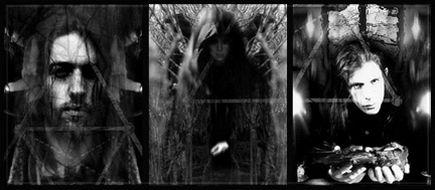 Corvus Corax - Photo