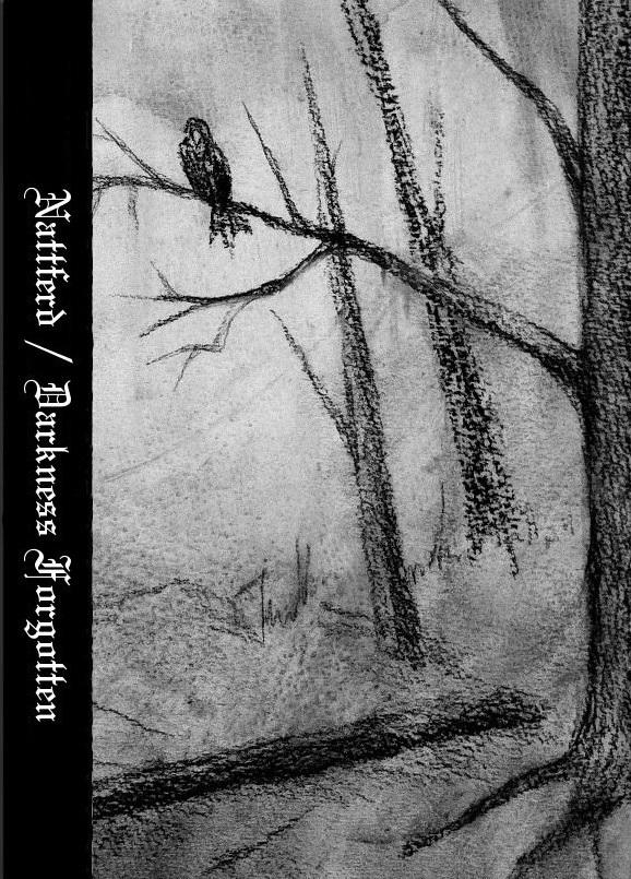 Nattferd - Darkness Forgotten