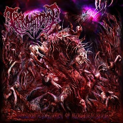 Traumatomy - Transcendental Evisceration of Necrogenetic Beasts