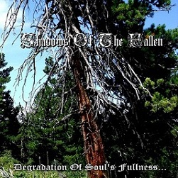 Shadows of the Fallen - Degradation of Soul's Fullness