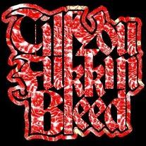 Till You Fukkin Bleed