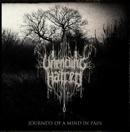 Unending Hatred - Journeys of a Mind in Pain