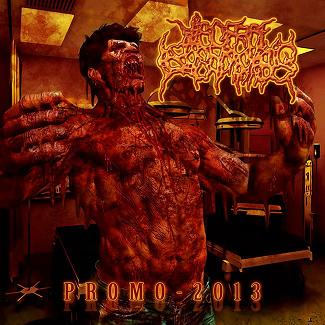 Visceral Leishmaniasis - Promo - 2013
