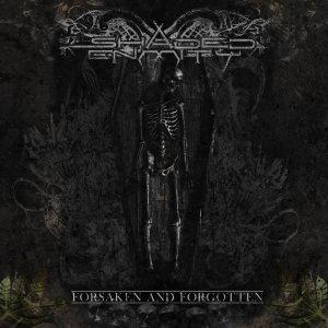 Shaded Enmity - Forsaken and Forgotten