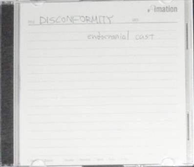 Disconformity - Endocranial Cast