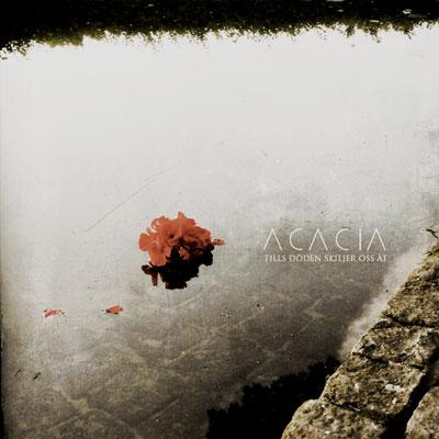 Acacia - Tills döden skiljer oss åt