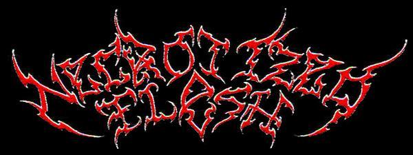 Necrotized Flesh - Logo