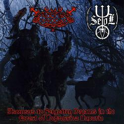 Noctis Invocat / Seol - Ascensus to Forgotten Dreams in the Forest of Depressiva Luxuria