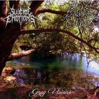 Suicide Emotions / Agoraphobia - Grey Visions