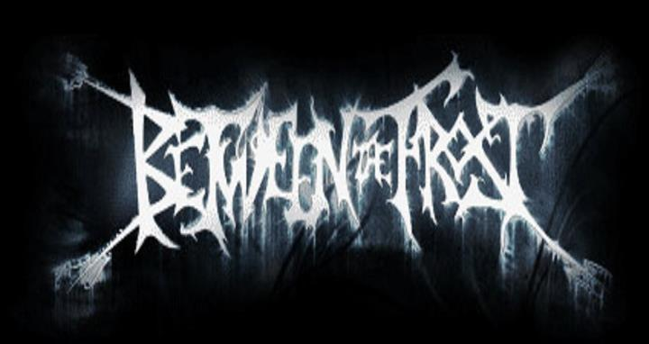 Between the Frost - Logo