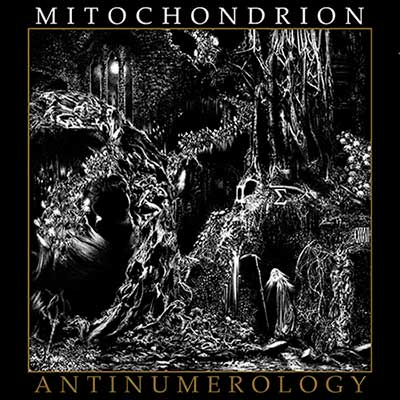 Mitochondrion - Antinumerology