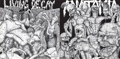 Anatomia / Living Decay - Anatomia / Living Decay