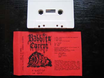 Rabbit's Carrot - A Question in Pain