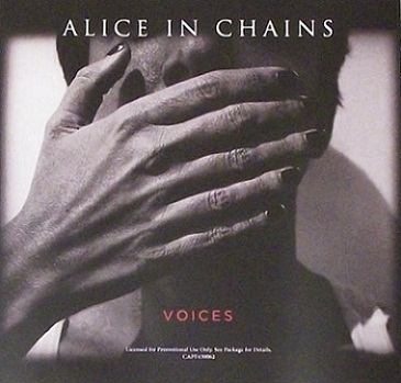 Alice in Chains - Voices