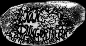 Nan Dungortheb - Logo
