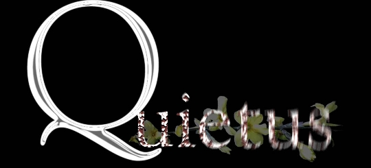 Quietus - Logo