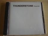 Thunderstone - Demo