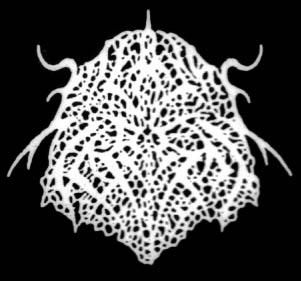 Eternal Forest - Logo