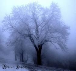 Adramalech - Winter Almanac