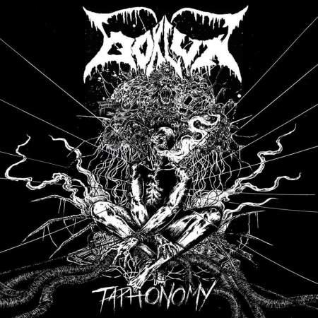 Bokluk - Taphonomy