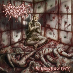 Festering Remains - The Destruction of Sanity