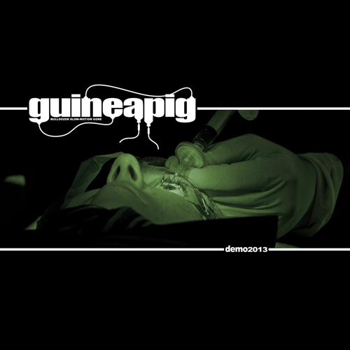 Guineapig - Demo 2013