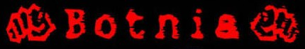 Botnia - Logo