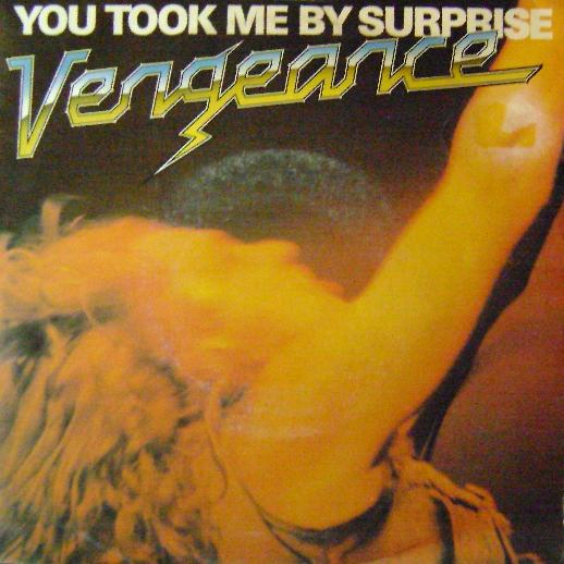 Vengeance - You Took Me by Surprise