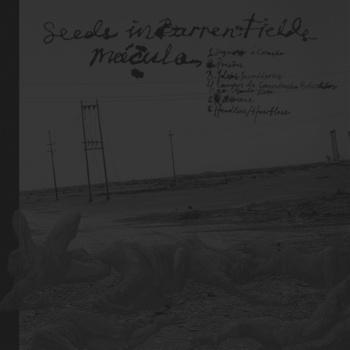 Seeds in Barren Fields - Mácula / Seeds in Barren Fields