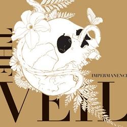 The Veil - Impermanence