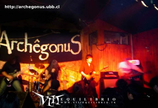 Archegonus - Photo