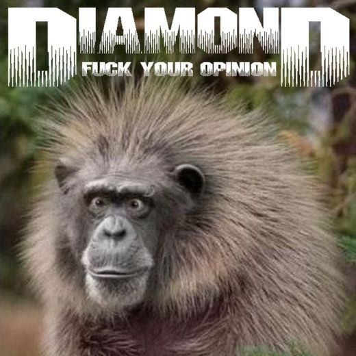 Diamond - Fuck Your Opinion