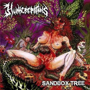 Hura Crepitans - Sandbox Tree
