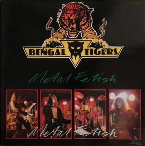 Bengal Tigers - Metal Fetish