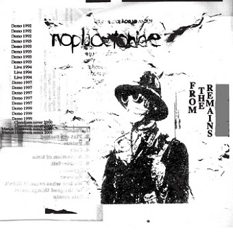 Noplacetohide - From the Remains