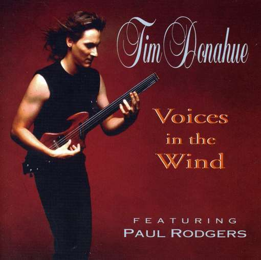Tim Donahue - Voices in the Wind