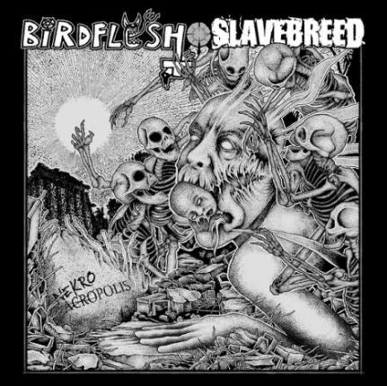 Birdflesh / Slavebreed - Nekroacropolis