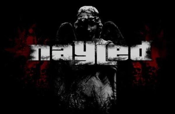Nayled - Logo