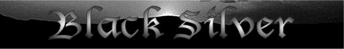 Black Silver - Logo