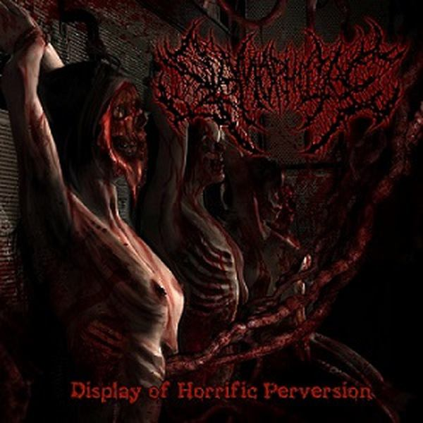 Slamophiliac-Display Of Horrific Perversion-(CDNSLAM003)-CD-FLAC-2015-86D Download