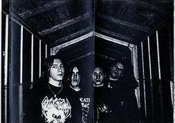 Ferocity - Photo