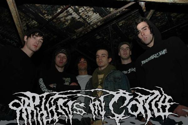 Orphans in Coma - Photo