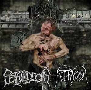 Fetal Decay / Filthy Flesh - Fetal Decay / Filthy Flesh