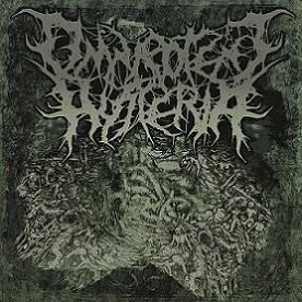 Omnipotent Hysteria - 2015 Promo