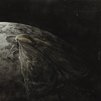 Augrimmer - Moth and the Moon