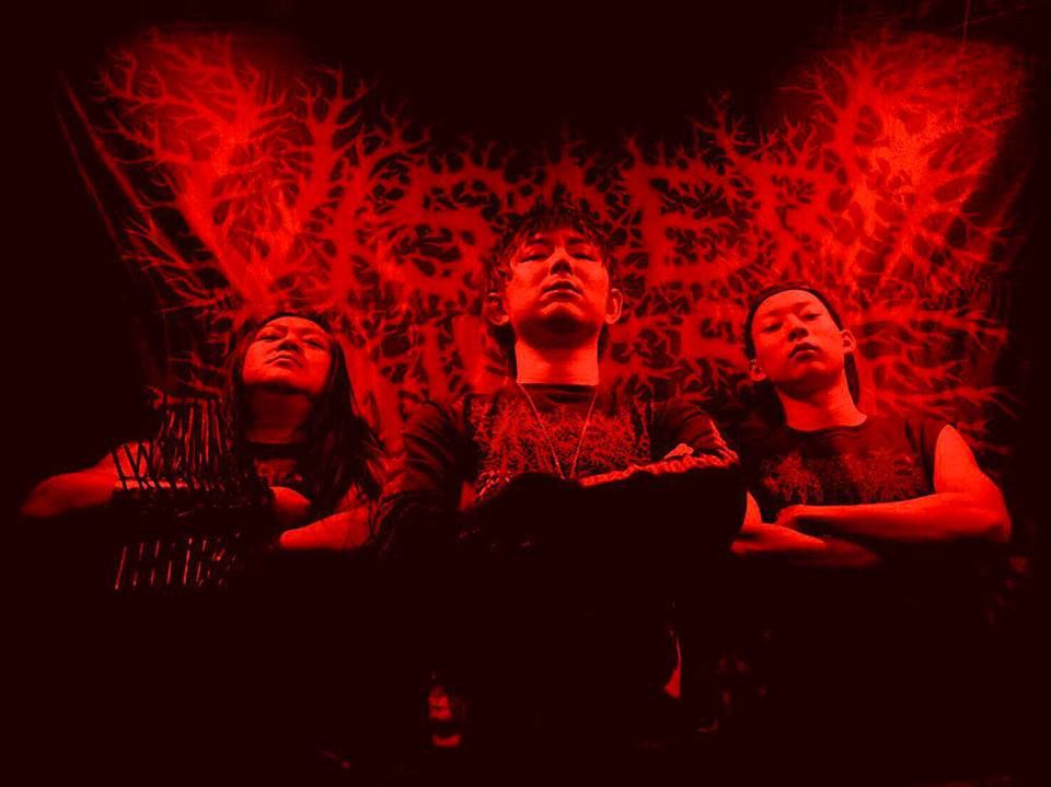 Viscera Infest - Photo