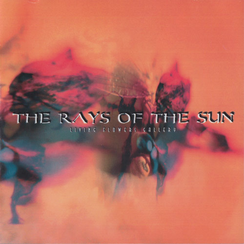 The Rays of the Sun - Living Flowers Gallery