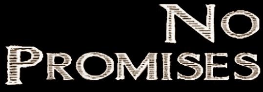 No Promises - Logo